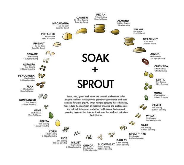 soak_nuts