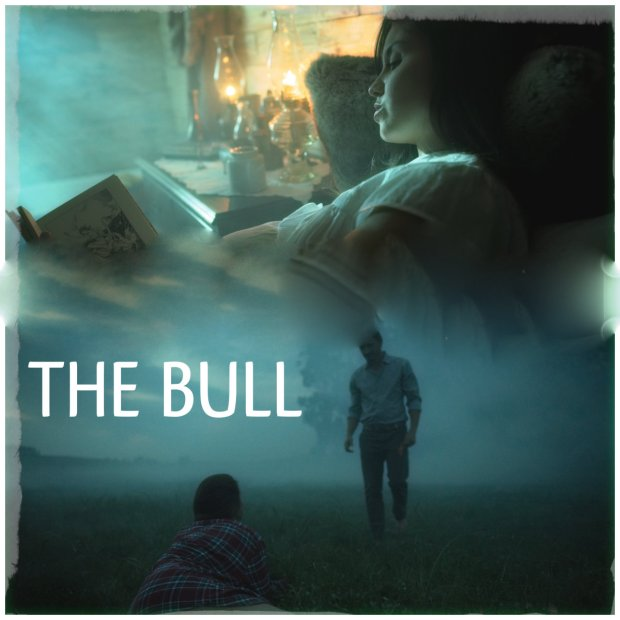 THE BULL COLLAGE
