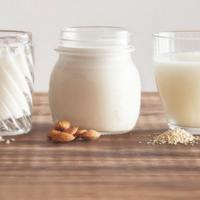 FRIA'S INGREDIENTS: Alternatives to dairy milk